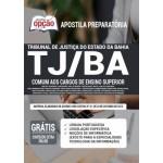 Apostila TJ-BA 2021 - Comum aos Cargos de Ensino Superior