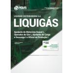 Apostila Liquigás 2018 - Ajudante de Motorista Granel I, Operador(a) de Gás I, Ajudante de Carga e Descarga I e Oficial de Produção I