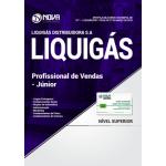 Apostila LIQUIGÁS 2018 - Profissional de Vendas - Júnior